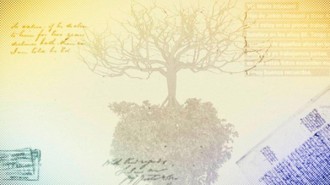 árbol genealógico imagen blog